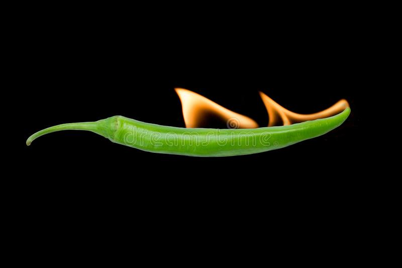 Der Pfeffer des scharfen Paprikas w?rzig mit Feuer auf schwarzem Hintergrund stockfotos