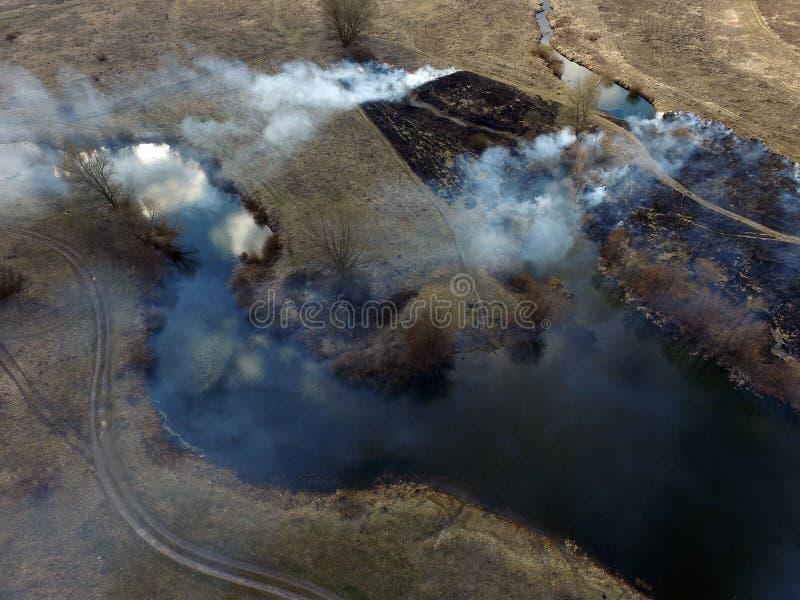 Der Rauch vom Brennen des Brummenbildes des trockenen Grases stockfotografie