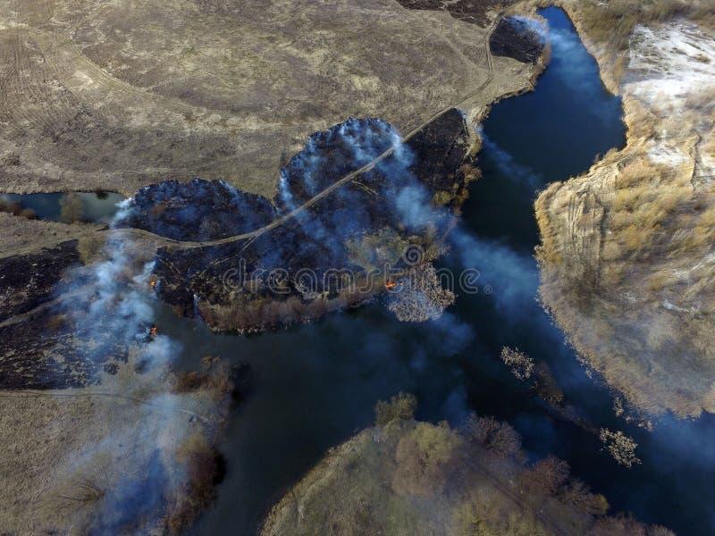 Der Rauch vom Brennen des Brummenbildes des trockenen Grases stockbild