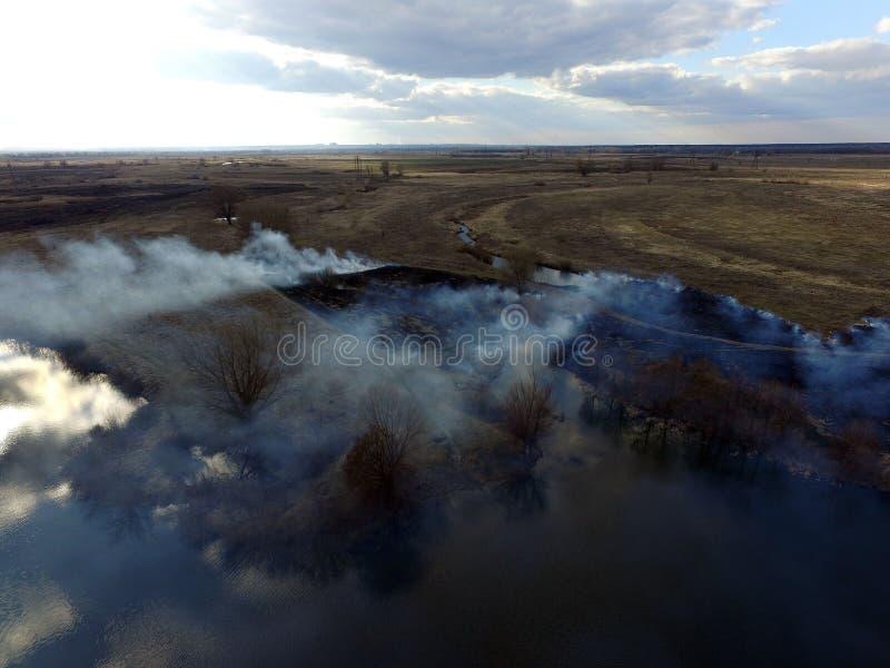 Der Rauch vom Brennen des Brummenbildes des trockenen Grases lizenzfreies stockfoto