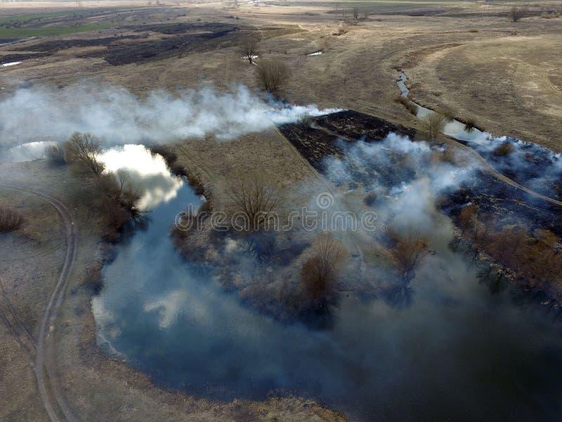 Der Rauch vom Brennen des Brummenbildes des trockenen Grases lizenzfreie stockfotos