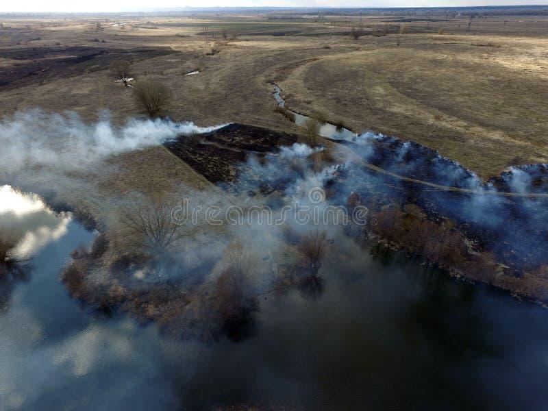 Der Rauch vom Brennen des Brummenbildes des trockenen Grases lizenzfreie stockfotografie