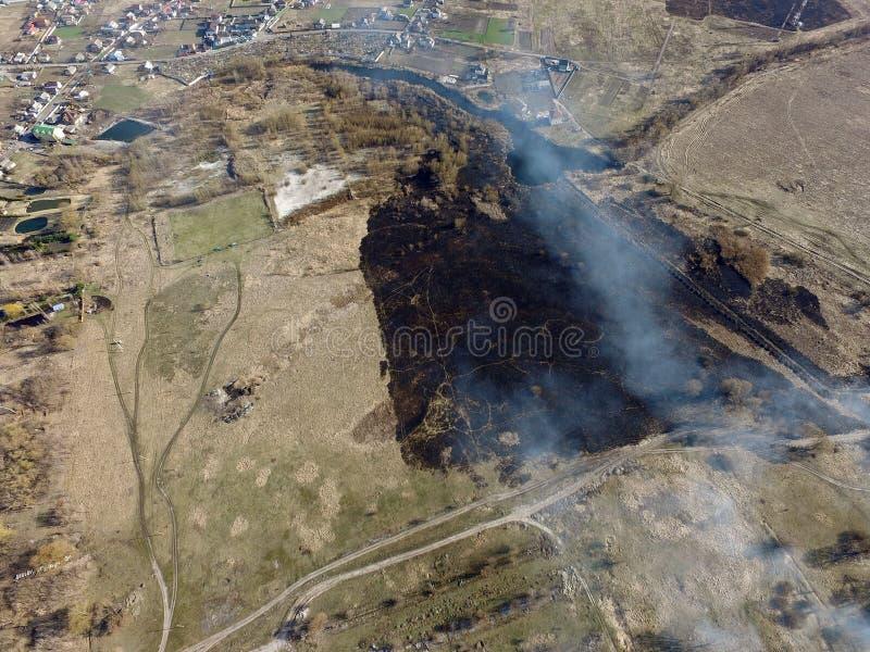 Der Rauch vom Brennen des Brummenbildes des trockenen Grases lizenzfreie stockbilder