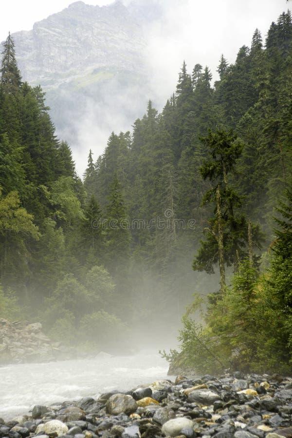 Der raue Fluss lizenzfreies stockfoto