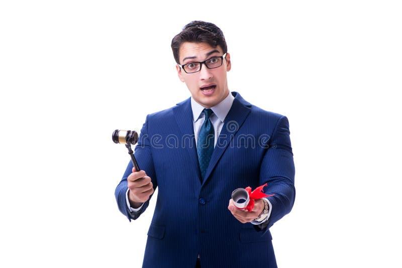 Der Rechtsanwaltjurastudent mit einem Hammer lokalisiert auf weißem Hintergrund stockfotografie