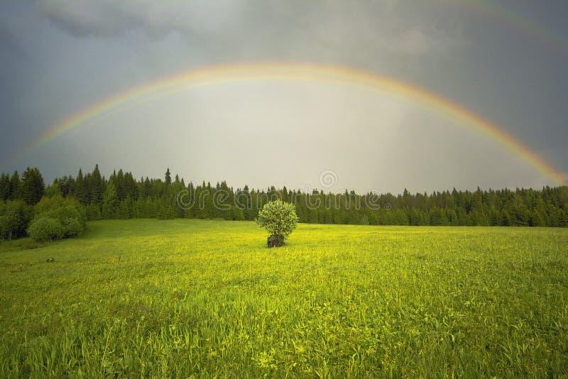 Der Regenbogen lizenzfreie stockbilder
