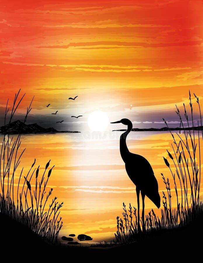 Der Reiher auf dem See auf Sonnenuntergang vektor abbildung