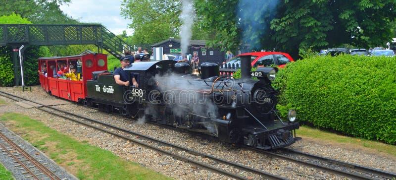 Der Rio Grand Steam-Zug an der Audley-Enden-Miniatureisenbahn stockbild
