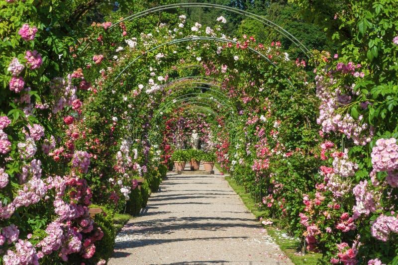 Der Rosengarten Beutig in Baden-Baden lizenzfreie stockfotos