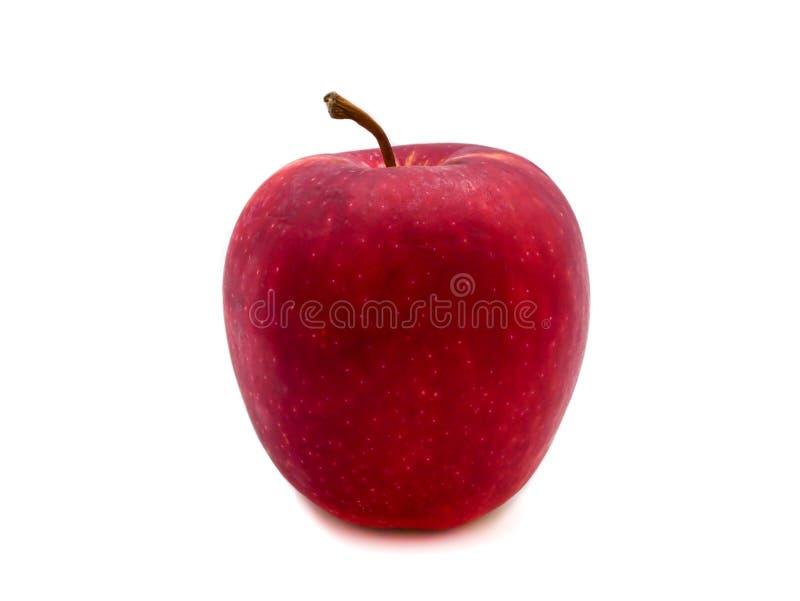 Der rote Apfel, der auf dem weißen Hintergrund lokalisiert wird, ist es eine sehr populäre Frucht in der Welt stockbild