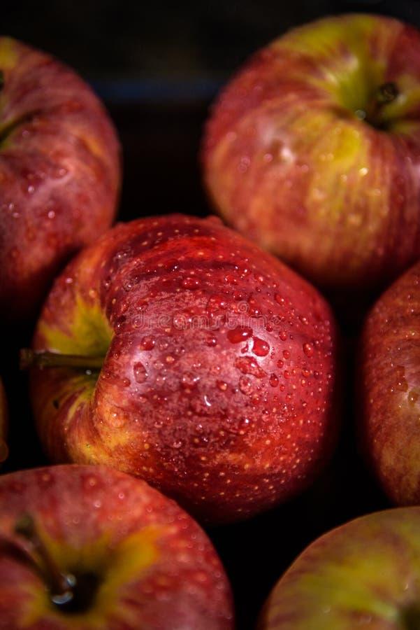 Der rote Apfel 3 lizenzfreie stockfotografie