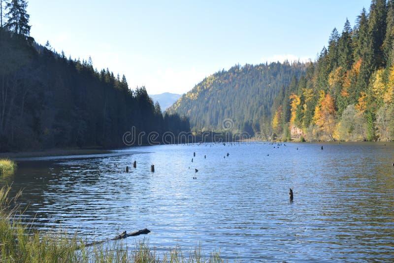 Der rote See Rumänien stockbild