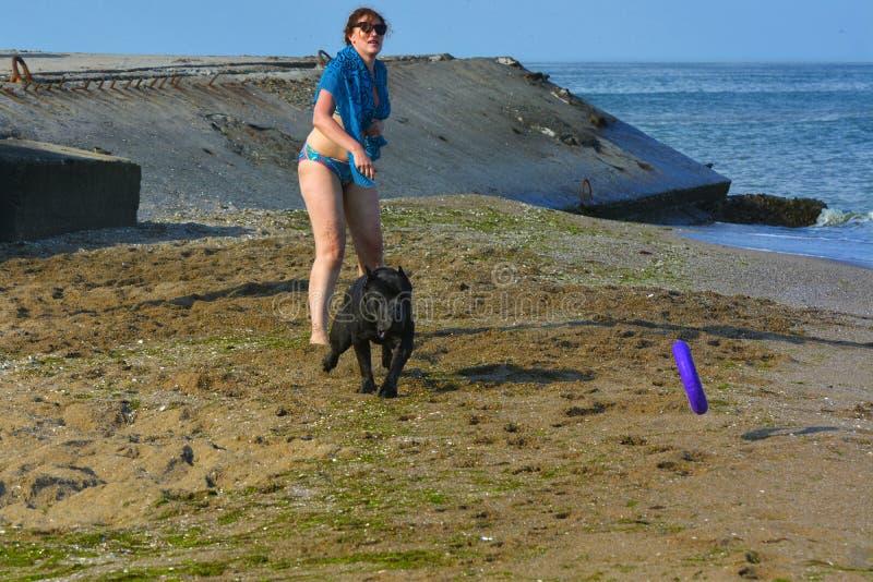 Download Der Rottweiler-Hund Und Ihre Geliebte Im Wasser Redaktionelles Stockfotografie - Bild von freiheit, illustrativ: 96930657