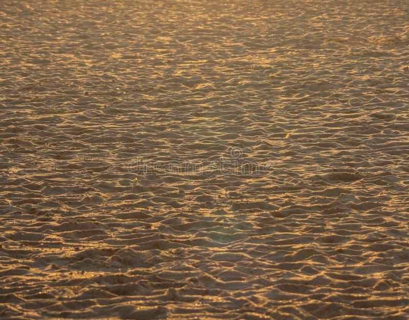 Der Sand auf dem Strand in Ostende, vergoldet durch den Sonnenuntergang stockfotografie