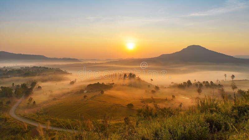 Der schöne Morgen nebelhaft stockfotografie