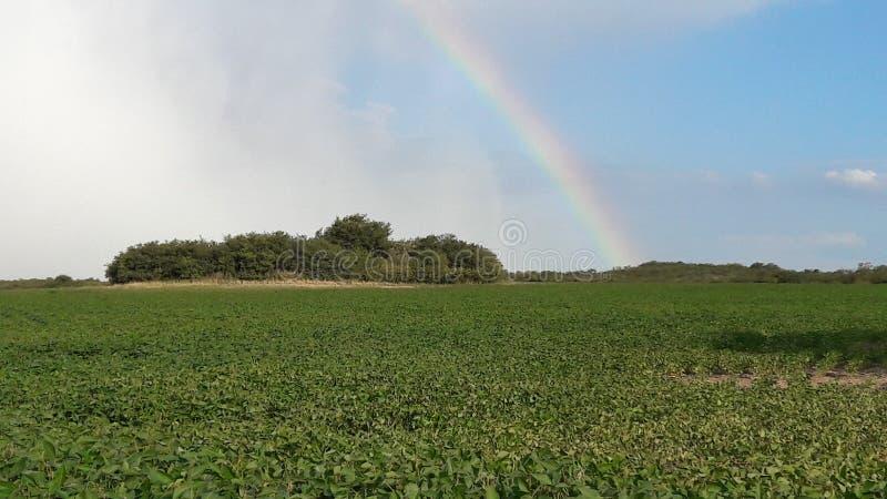 Der schönste Regenbogen stockfoto