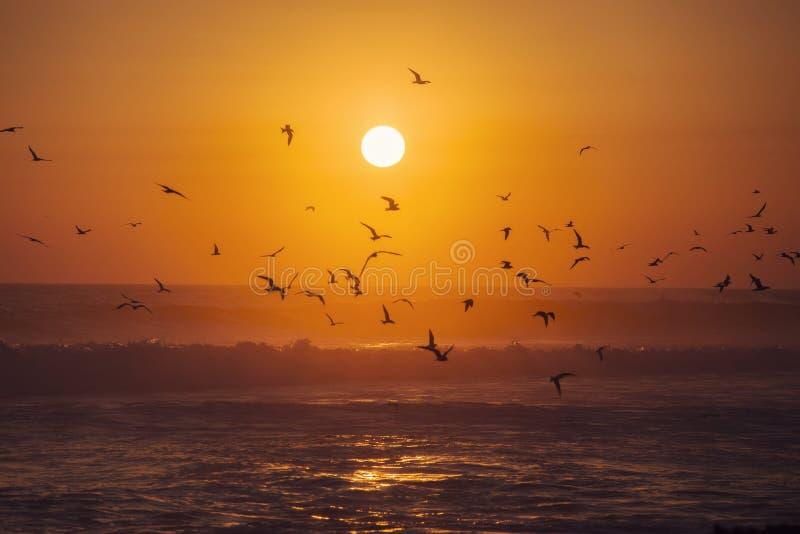 Der schönste Sonnenuntergang stockfotos
