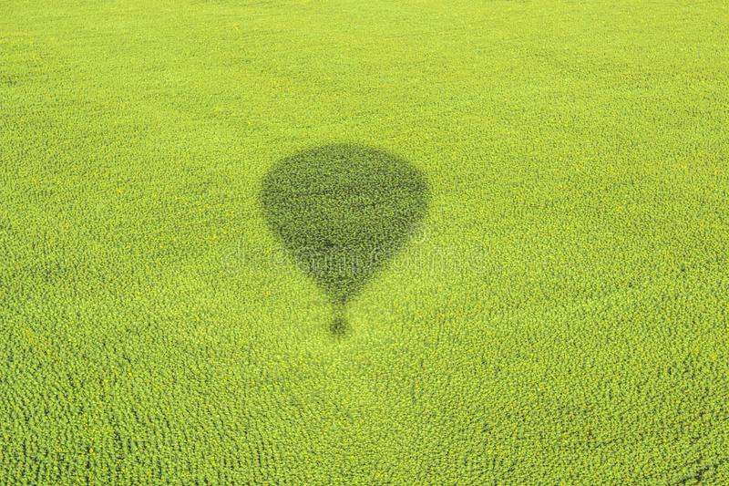 Der Schatten des Ballons und der Natur lizenzfreie stockfotos