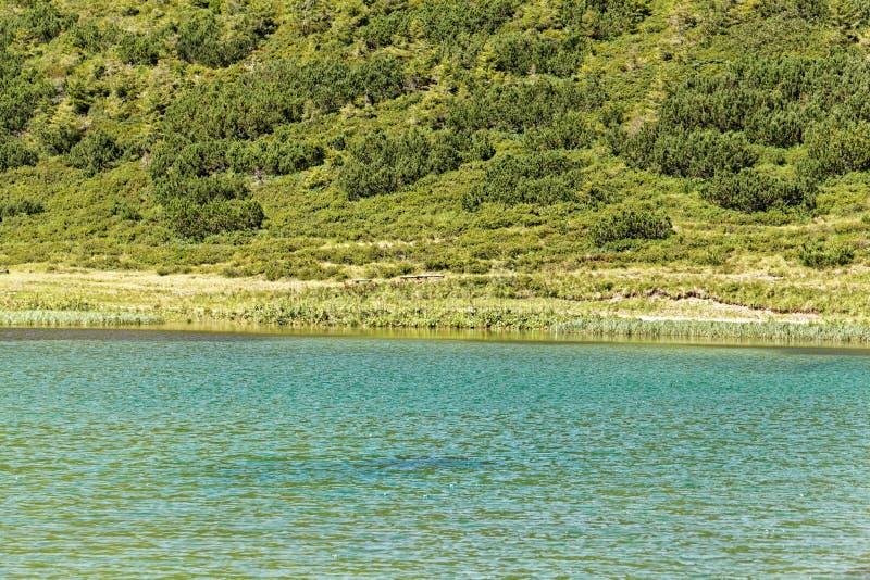 Der Schlappolt See in den Allgäu-Alpen im Bayern lizenzfreie stockfotos