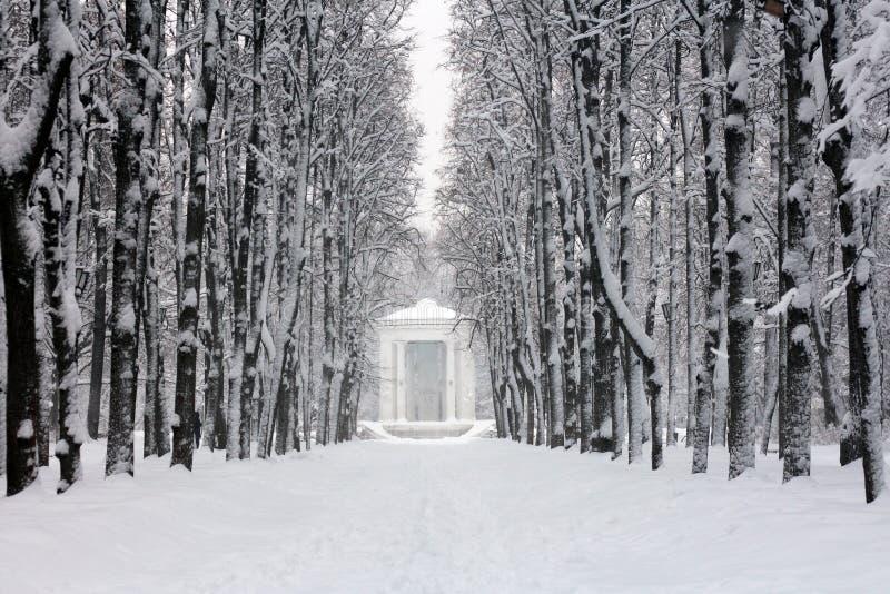 Der schneebedeckte Park nach Schneefällen stockfotografie