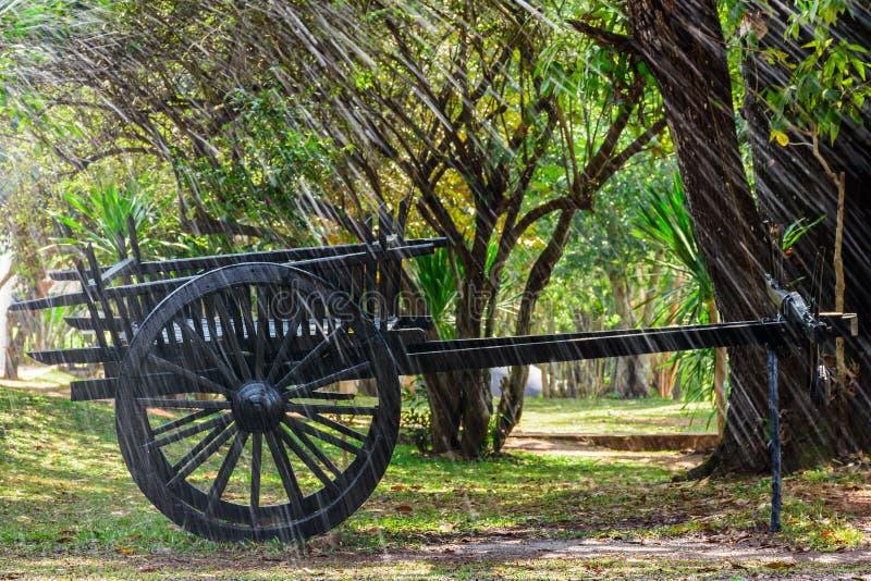 Der schwarze alte Warenkorb auf grünem Gras mit vielen Anlagen im Garten und das Spritzen wässern als Vordergrund stockfotografie