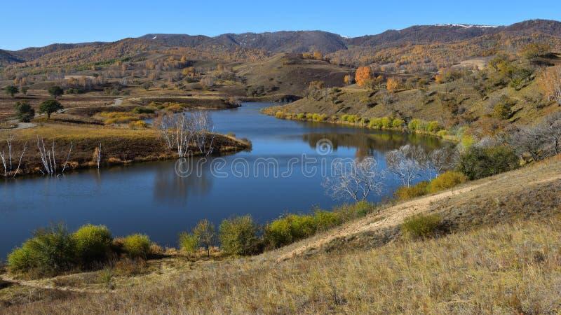 Der See und die Birke auf der Wiese im Herbst lizenzfreies stockfoto