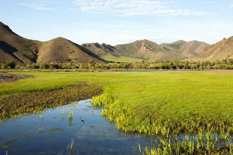 Der Selenge-Fluss lizenzfreies stockfoto