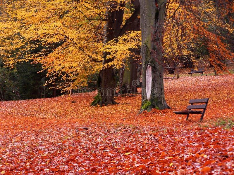 Der Sitz im Park lizenzfreie stockfotos