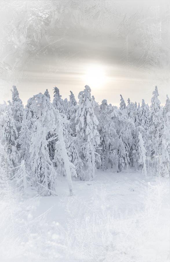 Der Snowy-Tag lizenzfreies stockbild