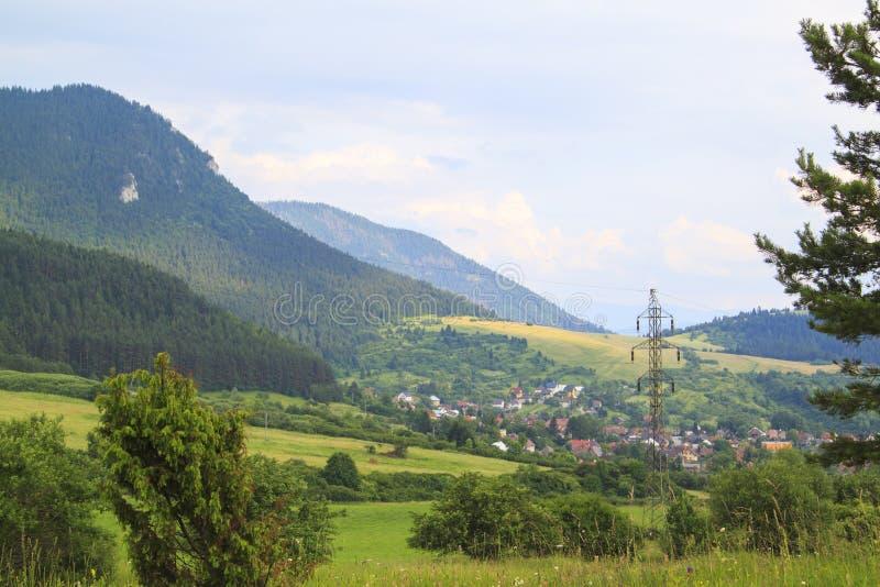 Der Sommer forrest, die Wiesen und die Feldlandschaft gestalten in Slov landschaftlich lizenzfreie stockfotos