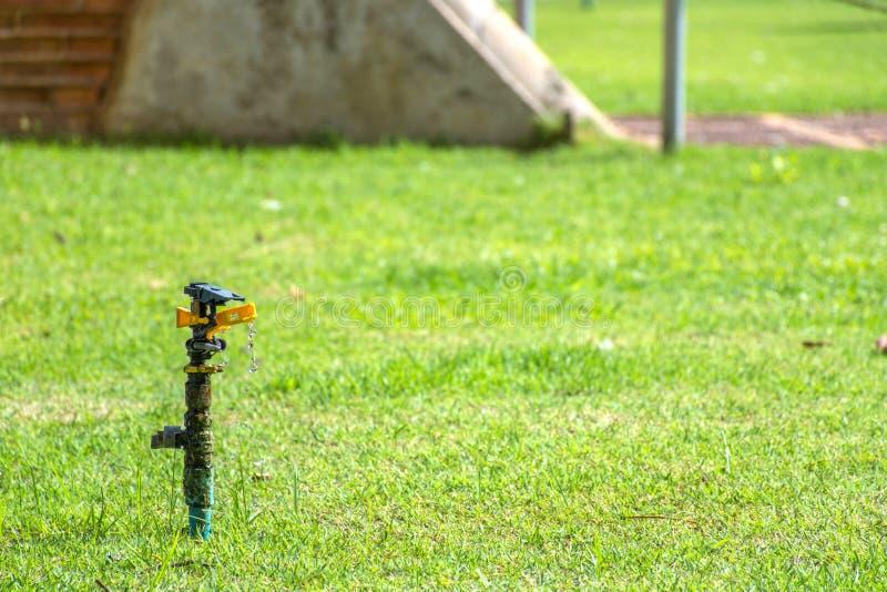 Der Springer, zum der Anlagen mit Wasser zu wässern lecken oder wässern Lauf langsam stockfotos