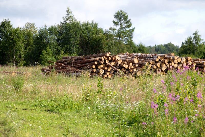 Der Stapel des Bauholzes auf dem Feld stockbild