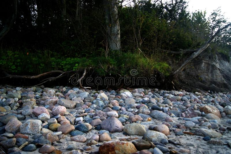 Download Der Stein auf dem Strand stockbild. Bild von grün, busch - 90235041