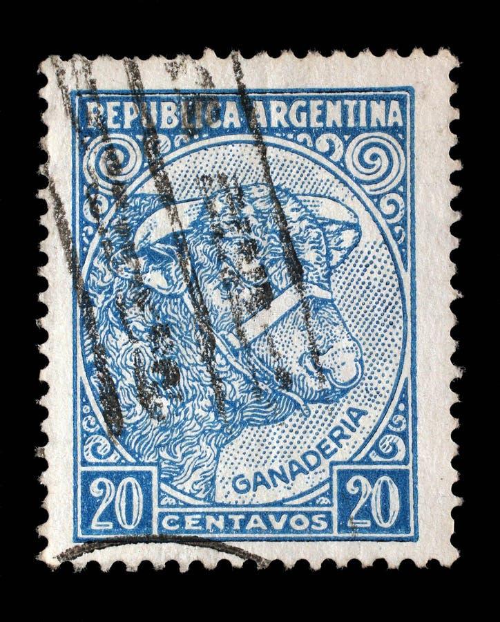 Der Stempel, der in Argentinien gedruckt wird, zeigt Bild einer Kuh stockbilder