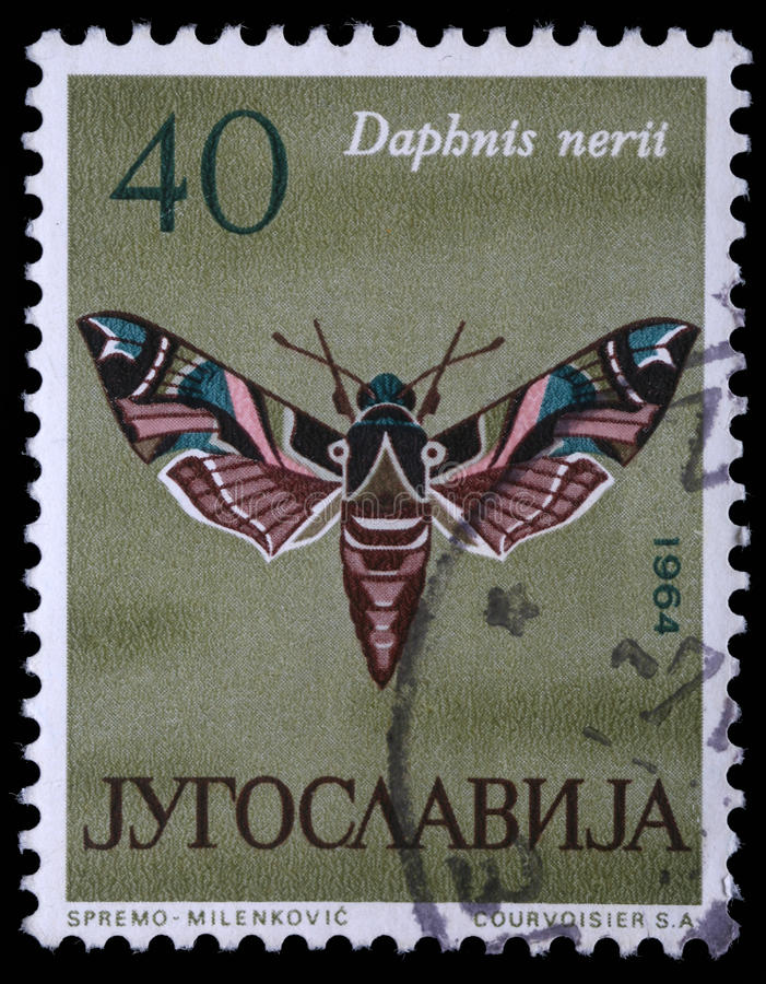 Der Stempel, der in Jugoslawien gedruckt wird, zeigt Schmetterling stockbild
