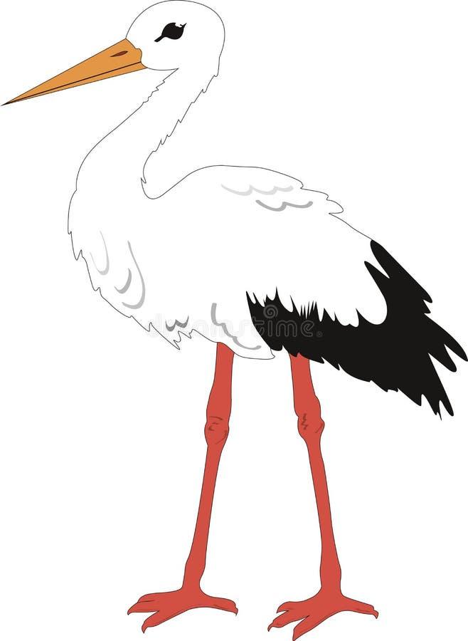 Der Storch vektor abbildung