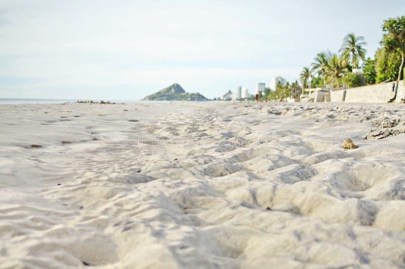 Der Strand und der Himmel stockbild