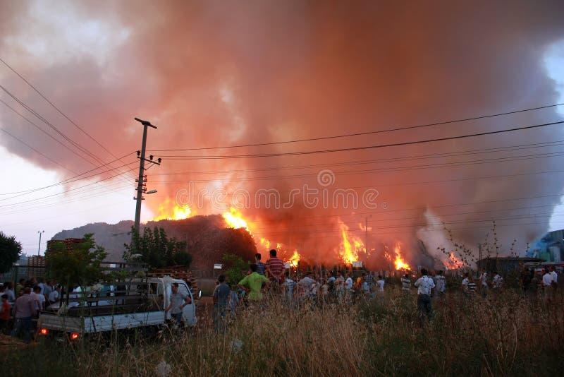 Der Türkei größte Spanplattefabrik auf Feuer lizenzfreie stockbilder