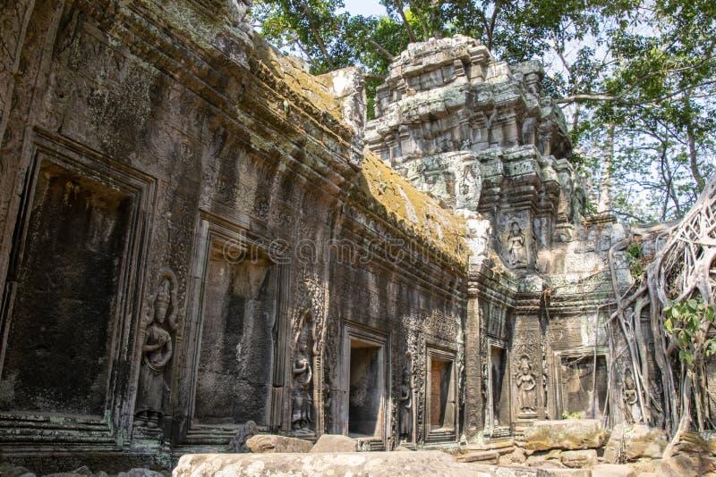 Der Tempel wird teilweise von dem Dschungel erholt Viele Ruinen ha stockbild