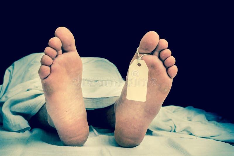 Der tote Mann ` s Körper mit leerem Tag auf Füßen unter weißem Stoff stockfotografie