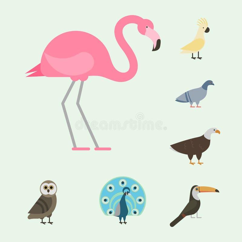 Download Der Vektorillustration Der Vogelspeziessammlung Tropische Federhaustiere Unterschiedlichen Des Wilden Tieres Avifauna Charaktere Vektor Abbildung - Illustration von fliege, haustiere: 96931978