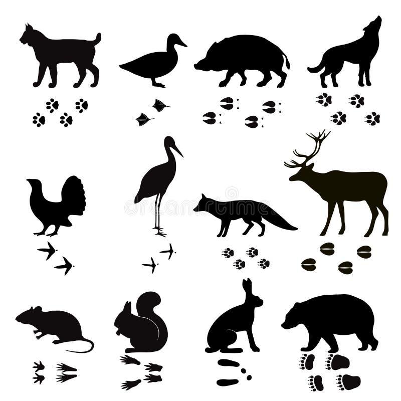 Der Vektortatzen-Schritte der wilden Tiere schwarzes Schattenbild stock abbildung