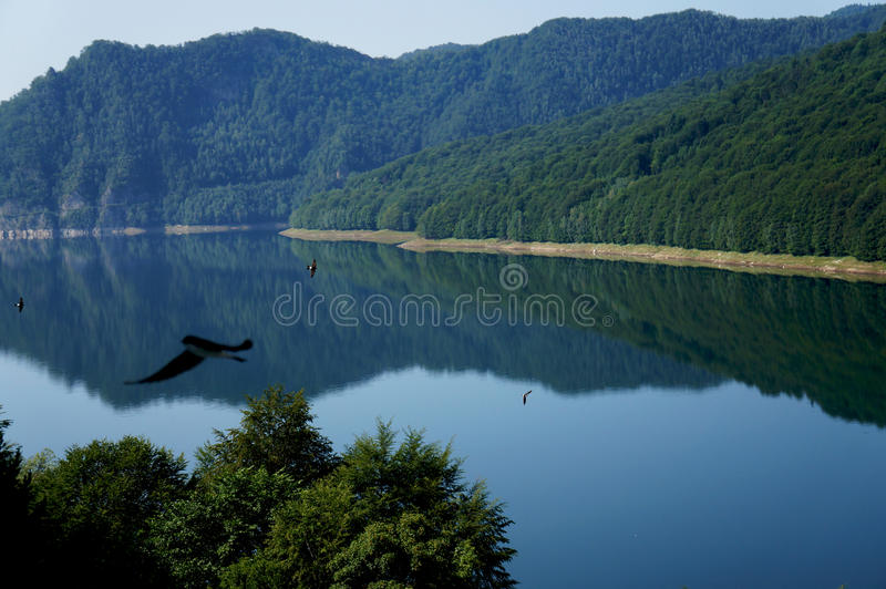 Der Vidraru See in den Fagaras Bergen von Rumänien lizenzfreies stockbild