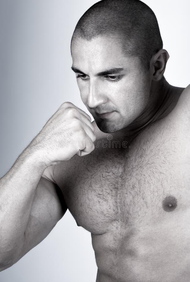 Der vollkommene muskulöse Mann lizenzfreie stockfotos