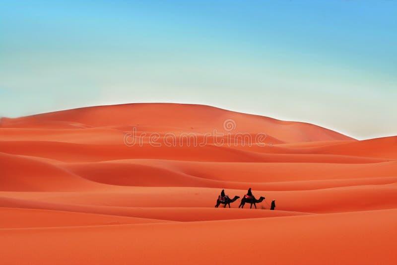 In der Wüste stockbilder