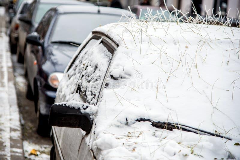 Der Wagen ist schneebedeckt und ein geheimnisvoller Friseur aus der Natur des Friseursalons, aus den Wurzeln gefallener Blätter lizenzfreies stockbild