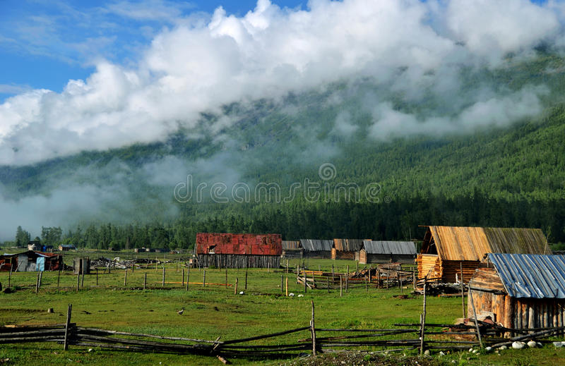 Der Wald und das Chalet stockfoto