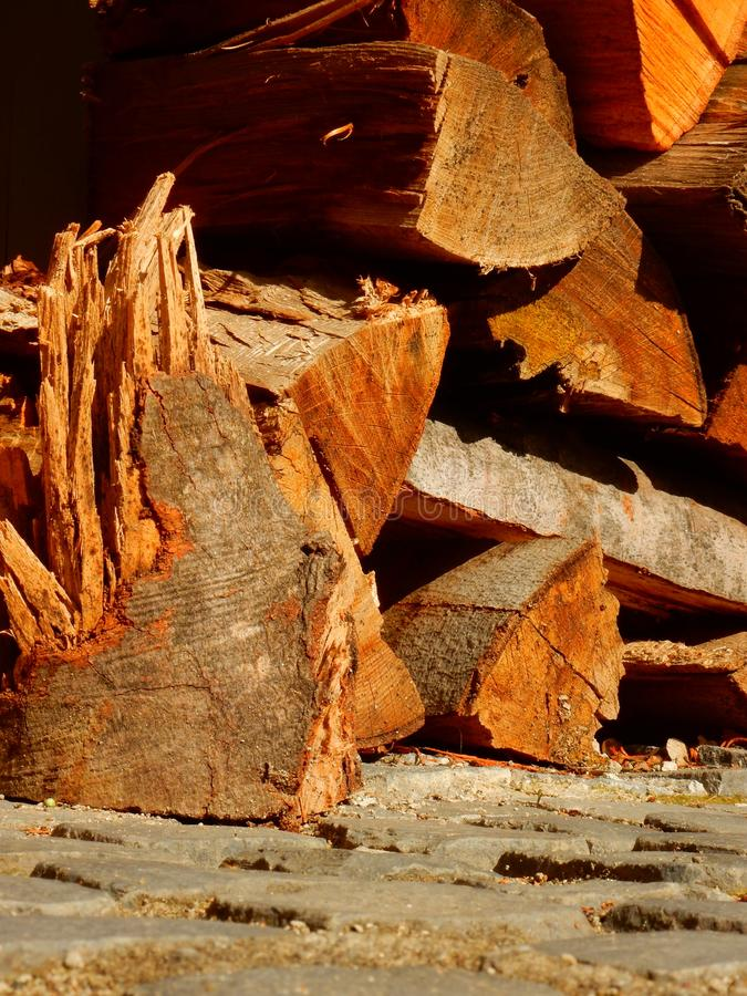 Der Wald und der Holzfäller lizenzfreie stockfotos