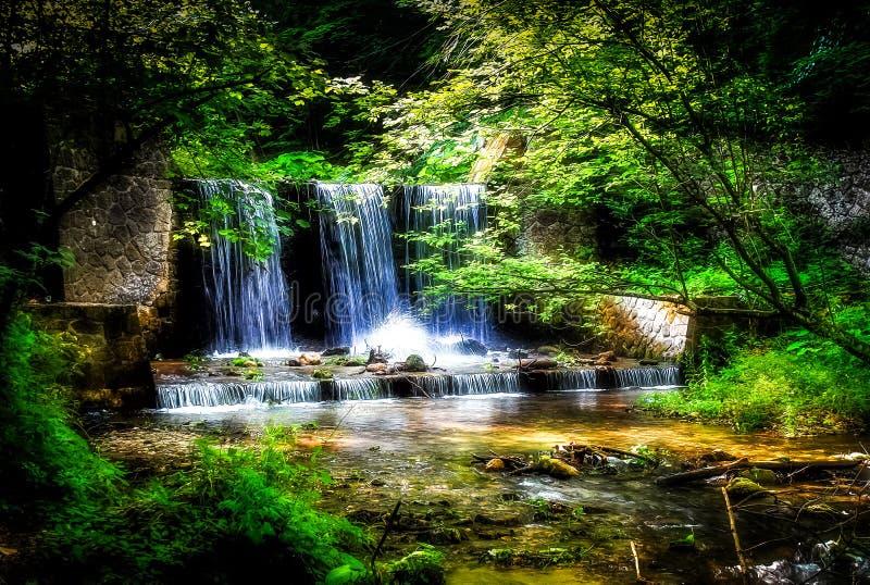 Der Wasserfall, der durch Bäume mit klarem Grün umgeben wird, verlässt in einem schönen Wald stockfotos