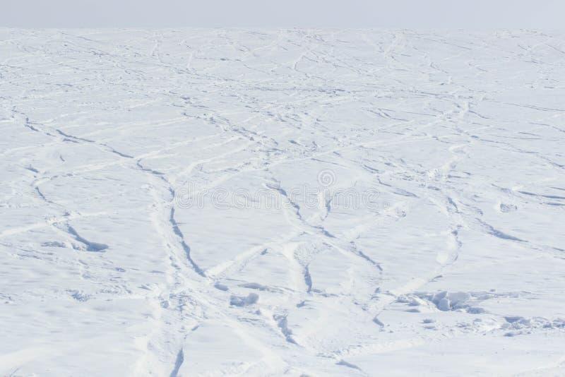 Der Weg auf der Tundra im Schnee lizenzfreies stockbild